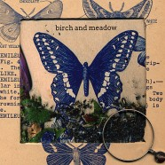 Birch And Meadow – Butterflies And Graves – Deluxe Version  SOLD OUT